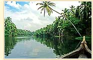 Backwater, Cochin
