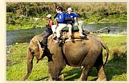 Elephant Safari, Bandhavagarh National Park
